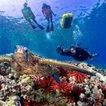 Alii Nui Maui - Luxury Molokini Snorkel Tours (Edited)