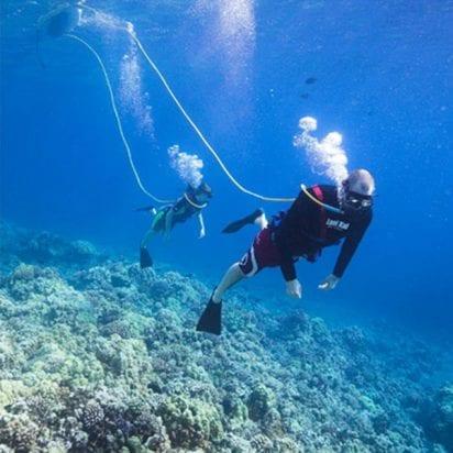 Aloha Blue Charters - Hokua Molokini Snorkel (Dive)