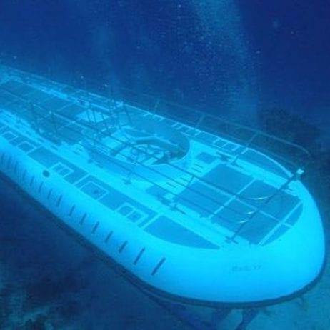 Atlantis Submarines (Scene Underwater)