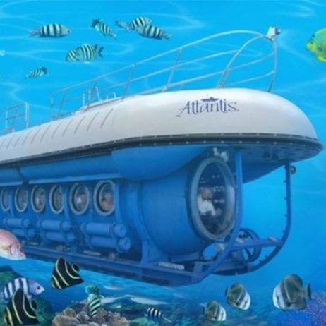 Atlantis Submarines (Things To Do in Maui)