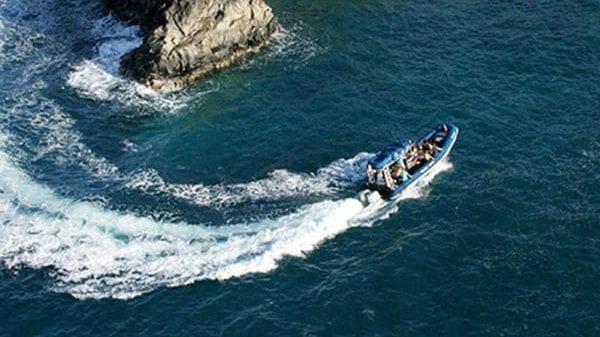 Blue Water Rafting - 4 Hour Kanaio Coast Snorkel (Rafting)
