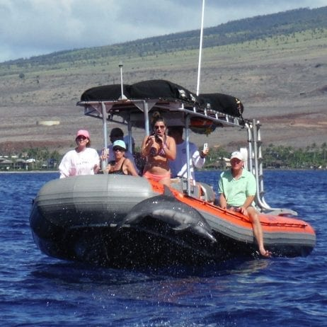Captain Steve's Rafting - Deluxe Lanai Dolphin Snorkel