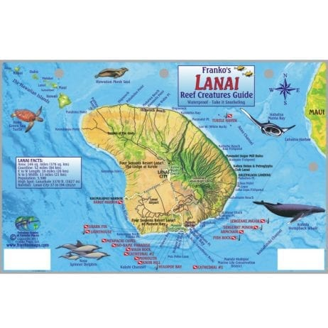 Expeditions - Lanai Jeep Excursion with Ferry (Map)