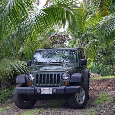 Expeditions - Lanai Trekker Tours (Black Jeep)