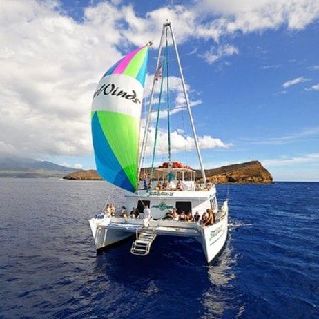 Four Winds Snorkeling - Morning Molokini Snorkel (Catamaran)