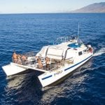 Frogman Charters - Afternoon Coral Gardens Snorkel (Boat)