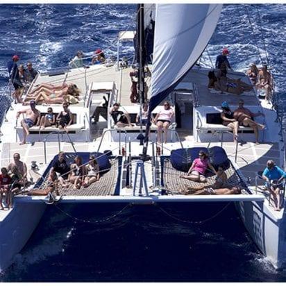 Gemini Charters - Whale Watching Sail (Relaxing)