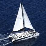 Gemini Charters - Whale Watching Sail (Sailing Catamaran)