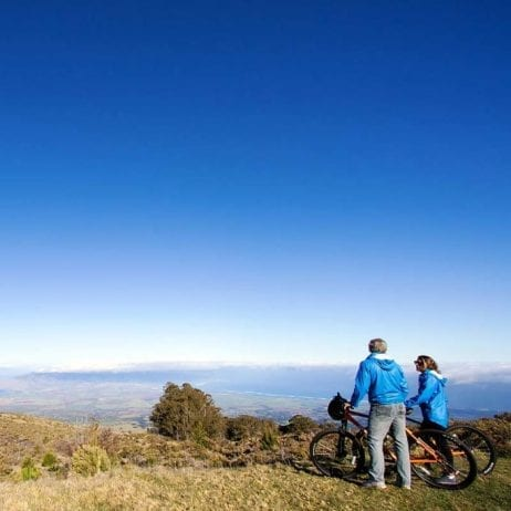 Haleakala Bike Company - Sunrise, Mid-Day, or Express Bike Tour (Couple)