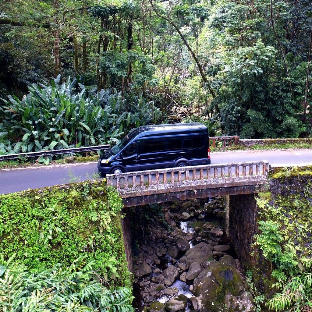 Hana Tours of Maui - Road to Hana Tour (Bridge)