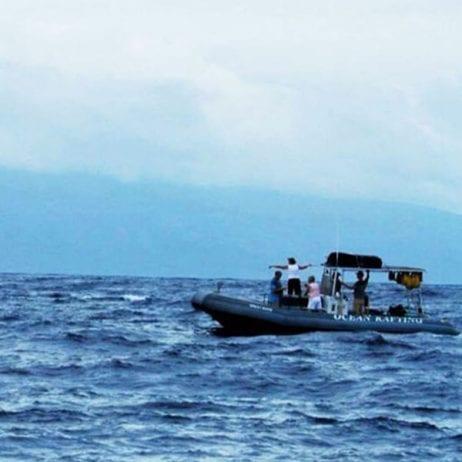 Hawaii Ocean Rafting - Lanai Dolphin Snorkel Tours (Rafting Adventure)