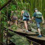 Hike Maui - East Maui Waterfall Hike 5 Hours (Group Activity)