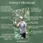 Hike Maui - Kayak and Waterfall Hike 7 Hours (Anatomy)