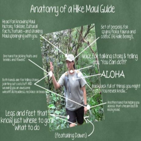 Hike Maui - Kayak and Waterfall Hike 7 Hours (Anatomy)