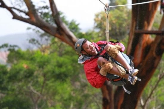 Fun Zipline in Maui - 2099