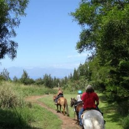 Ironwood Ranch - West Maui Journey (West Maui Horseback Ride)