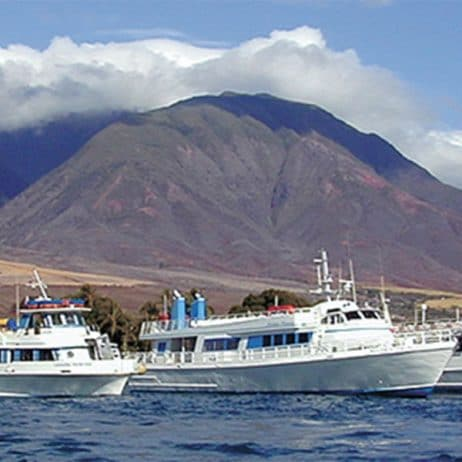 Lahaina Cruise Company - Maui Princess Dinner Cruise (Boat)