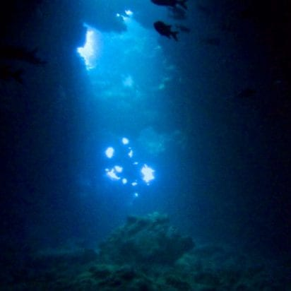 Lahaina Divers - Scuba Diving In Maui (Deep Water)