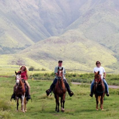 Lahaina Stables - Historic Ride (Maui Horseback Riding)