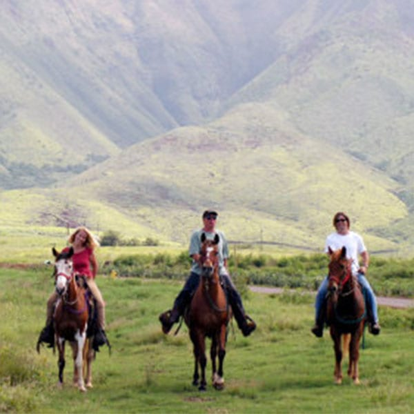 Lahaina Stables – Historic Ride