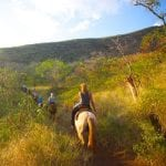 Lahaina Stables - Sunset Ride (Hill)