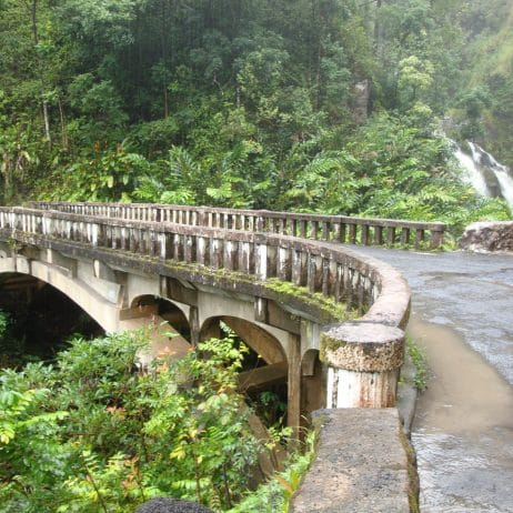 Mahalo Tours - Heavenly Hana Day Tour (Bridge)