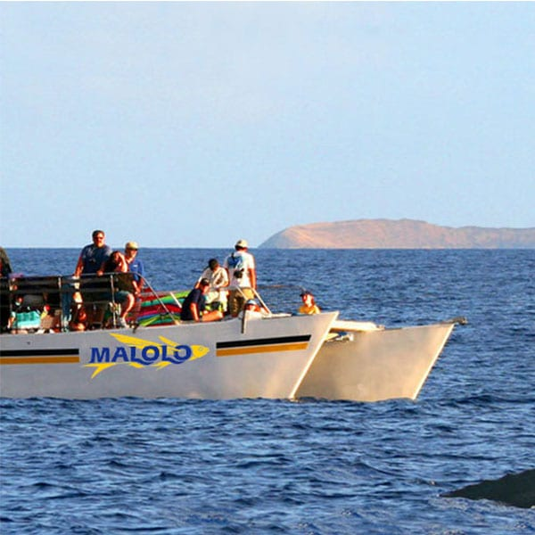 3d68e9a2227f Malolo Charters - Maui's Best Snorkel Tours - Maui Tickets for Less