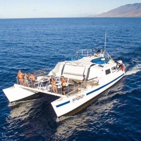 Malolo Charters - Molokini and Turtle Town Snorkel (Boat)