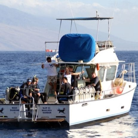 Maui Diamond II - Molokini Crater Two Tank Certified Dive (Back of the Boat)