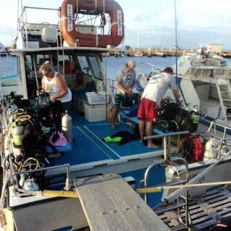 Maui Diamond II - Molokini Crater Two Tank Certified Dive (Check In)
