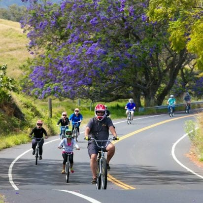 Maui Downhill - All Volcano Biking Tours (Family Activity)