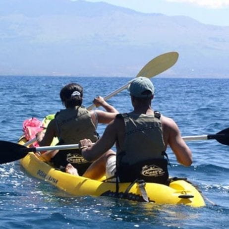 Maui Kayaks - 3 Hour or 4 Hour Tour (Couple Kayaking)