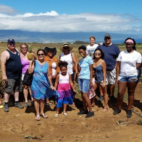 Maui Pineapple Farm Tour (Sightseeing Tour)
