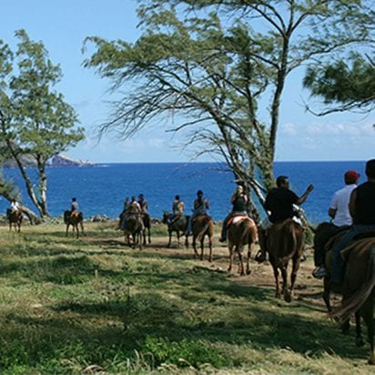 Mendes Ranch - Oceanfront Trail Ride (Trail Ride)