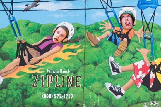 Piiholo Ranch Zipline 2825