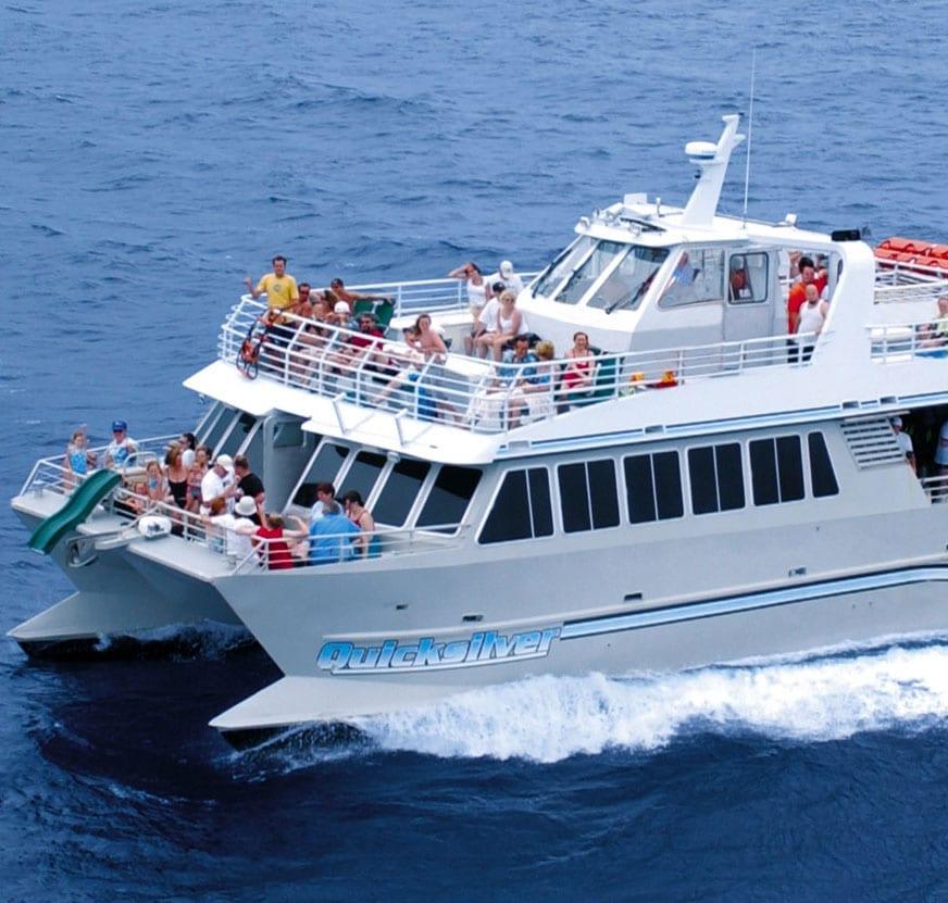 Quicksilver – Lanai Dolphin Snorkel