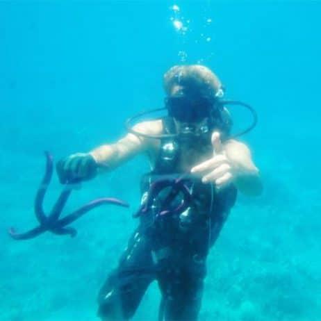 Reef Dancer - 60 Minute Tour (Star Fish)