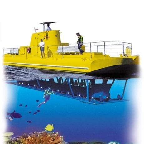 Reef Dancer - 90 Minute Tour (Yellow Submarine)
