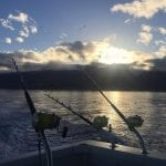 Start Me Up - All Fishing Charters (Fishing Rod)