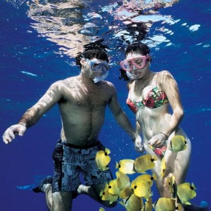 Teralani - West Maui Premier Snorkel Sail (Snorkel)
