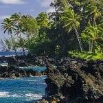 Discover Hawaii tours Maui - 2769