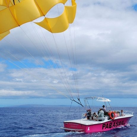 West Maui Parasail - Early Bird and Noon 800ft or 1200ft (Parasail in Pink)