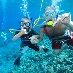 Four Winds Snorkeling – Afternoon Coral Gardens Snorkel