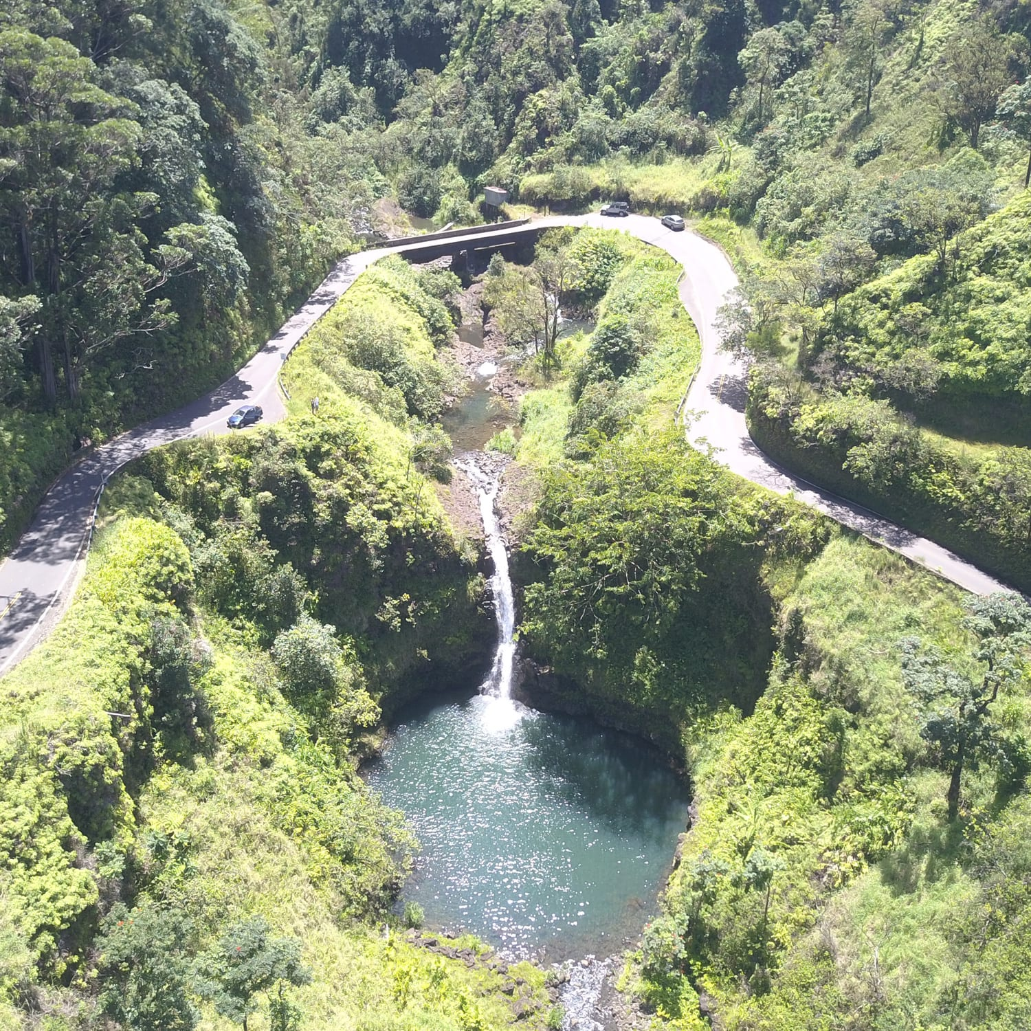 Polynesian Adventure Tours – Road to Hana Gold