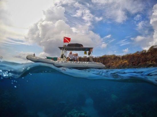 Hawaii Ocean Rafting Lanai Dolphin