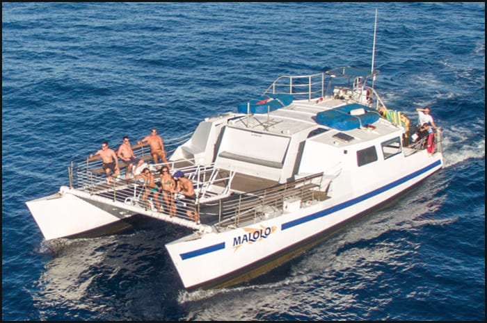Malolo Charters –  Molokini and Turtle Town Snorkel