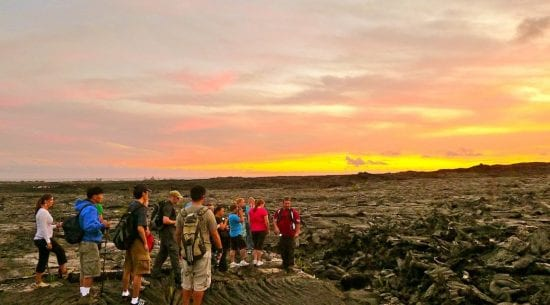 Tours in Maui - 2764
