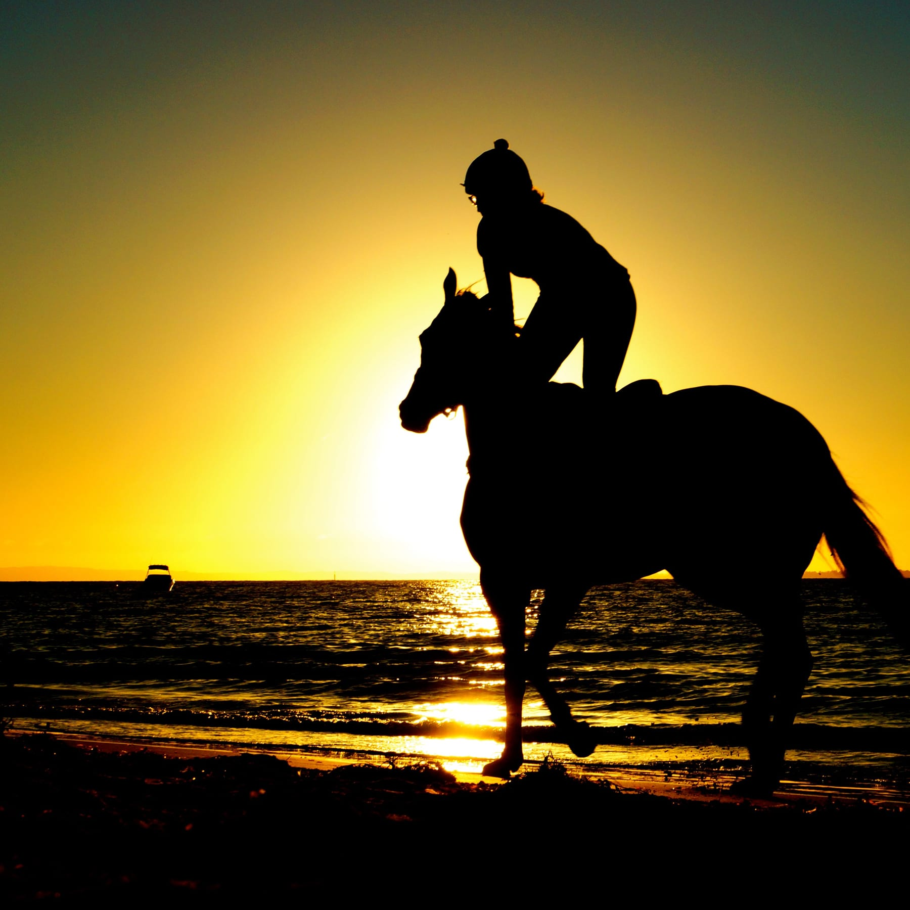 Lahaina Stables – Sunset Ride