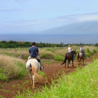 Ironwood Ranch Maui Horseback Riding - 2741