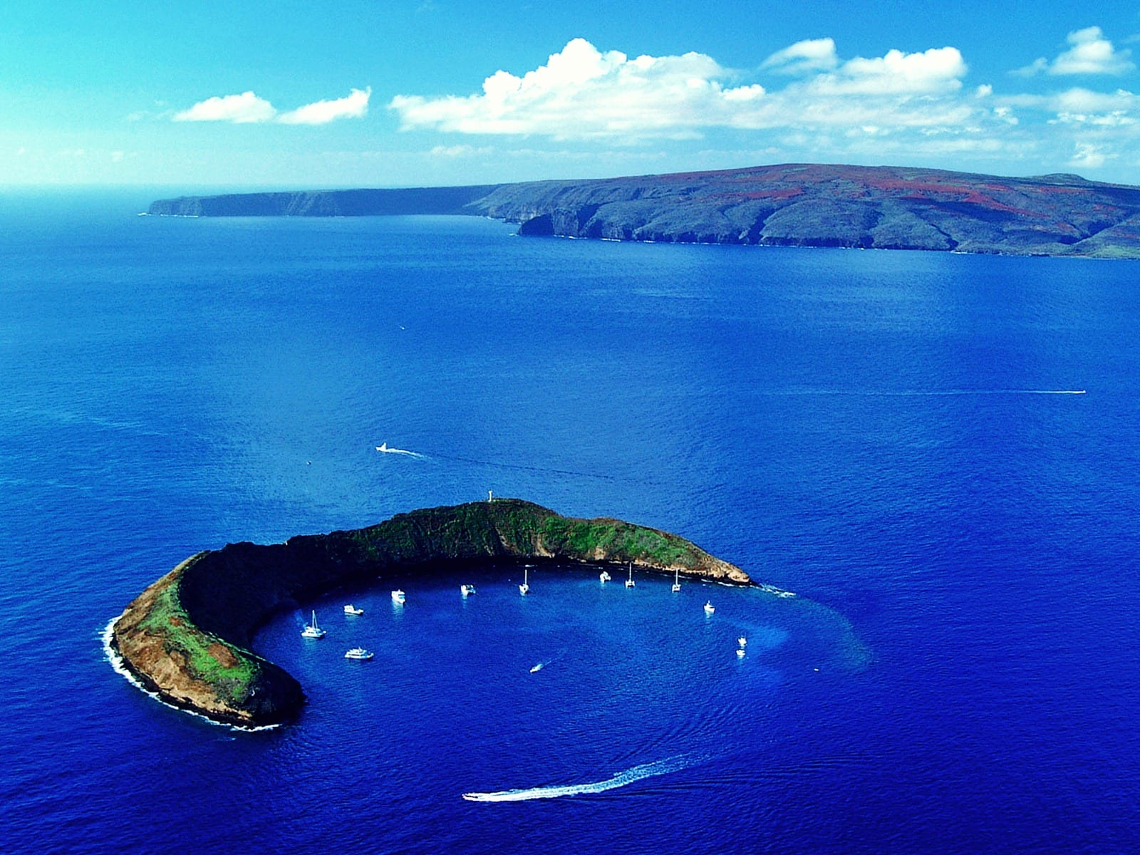 Pacific Whale Foundation – Molokini and Turtle Arches Snorkel
